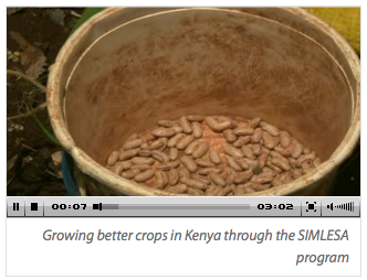 Growing better crops in Kenya video with no transcript